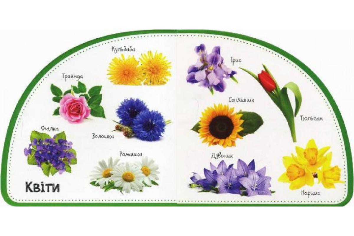 Детская книга Растения